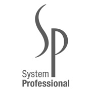 System Professionals